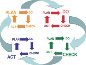 Plan Do Check Act Cycle III